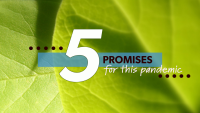 5 Promises for this Pandemic